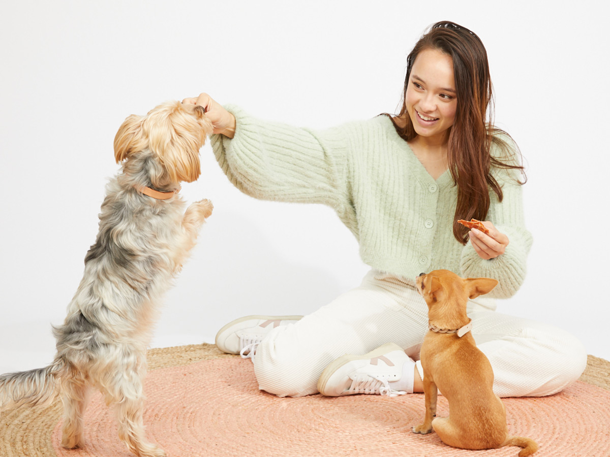 dog chews how to prevent choking